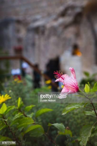 the tomb is empty - dustin abbott photos et images de collection