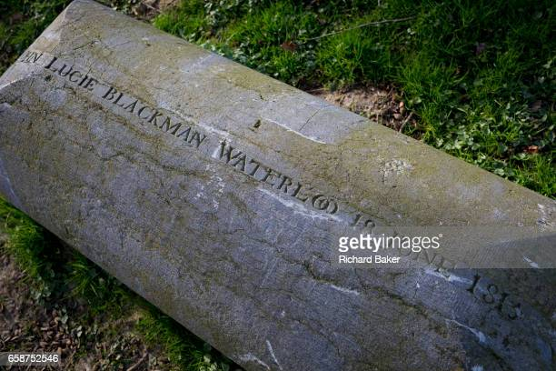 The tombstone of Captain John Lucie Blackman an officer of the Coldstream Guards killed by a French bullet in Hougoumont Farm at the very end of the...