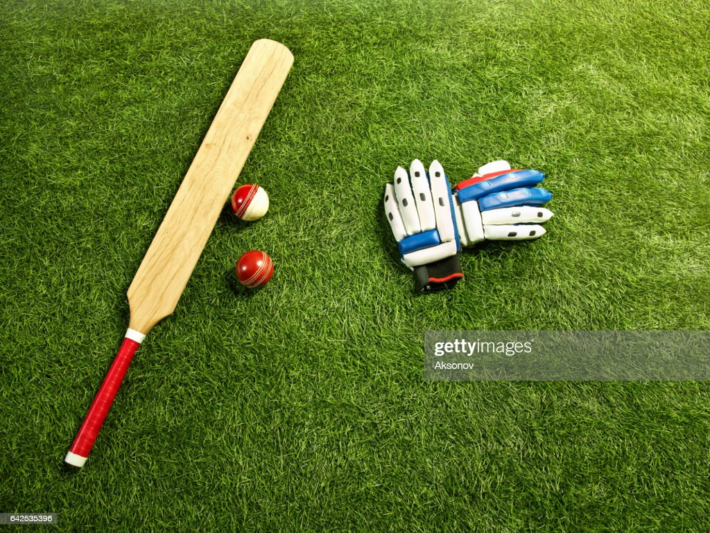 The tools for a cricket : Stock Photo