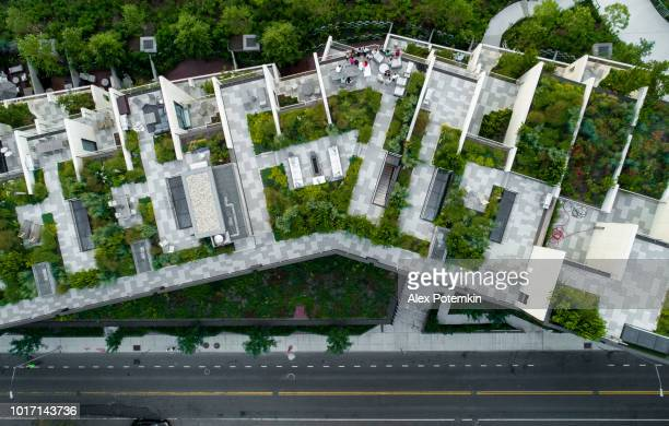 the top directly above view to the modern rooftops with gardens in brooklyn heights, at the waterfront nearby esplanade and brooklyn bridge park - environmental conservation stock photos and pictures