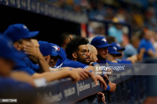 The Toronto Blue Jays' dugout looks on during the final moments of their 72 loss to the Tampa Bay Rays on April 9 2017 at Tropicana Field in St...