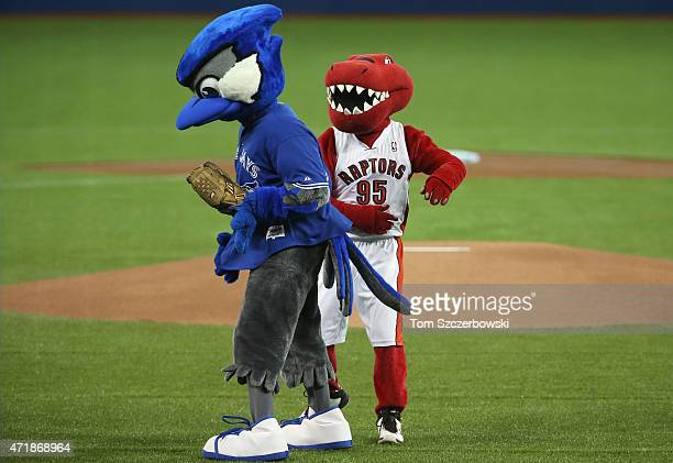 The Toronto Raptors mascot and the Toronto Blue Jays mascot Ace after the Raptor threw out the first pitch before the start of MLB game action...