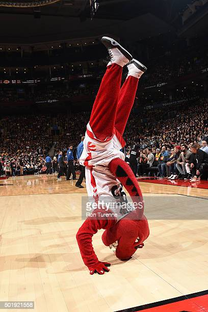 The Toronto Raptors mascot does a handstand during halftime against the Los Angeles Lakers on December 7 2015 at the Air Canada Centre in Toronto...