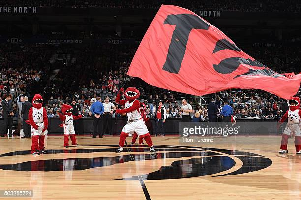 The Toronto Raptors mascot waves the flag before the game against the Chicago Bulls on January 3 2016 at Air Canada Centre in Toronto Canada NOTE TO...