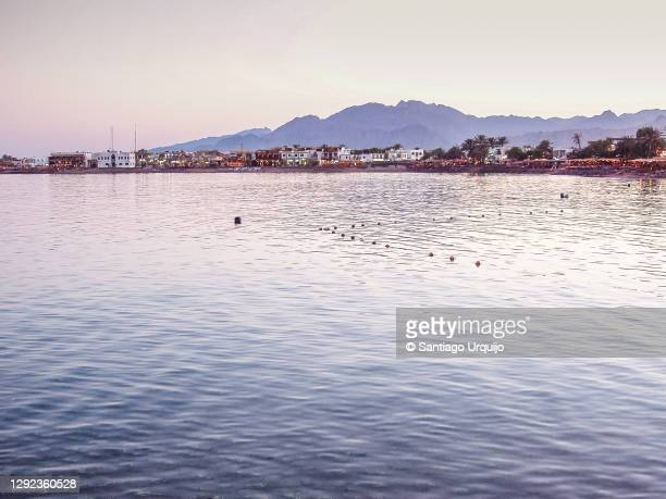 the touristic town of dahab in the red sea - tourism in south sinai stock pictures, royalty-free photos & images