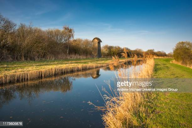 the tower hide on the banks of burwell lode waterway on wicken fen nature reserve in warm evening sun, cambridgeshire; england; uk - ケンブリッジシャー州 ストックフォトと画像