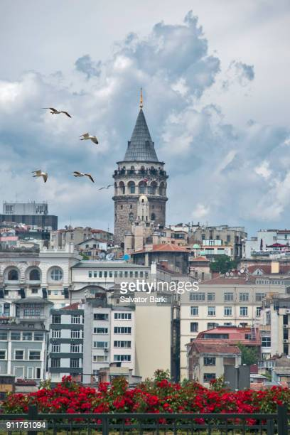 The Tower Of Galata
