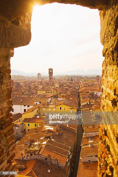 The town from Torre, tower, Guinigi