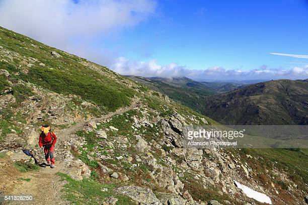 the trail to punta la marmora the highest point in the gennargentu mountain - gennargentu foto e immagini stock