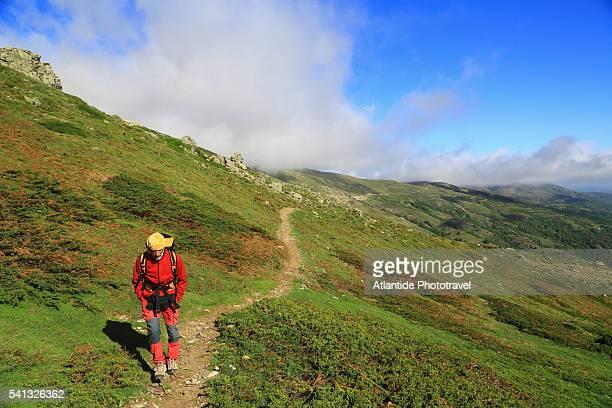 the trail to punta la marmora the highest point in the gennargentu mountain. - gennargentu foto e immagini stock
