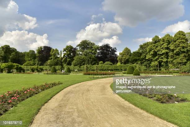 the tranquillity crushed gravel alley crossing majestic landscaped arrangement - arboreto foto e immagini stock