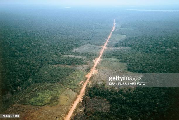 The TransAmazonian highway Amazonas State Brazil