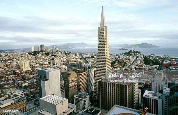 The TransAmerica Building San Francisco