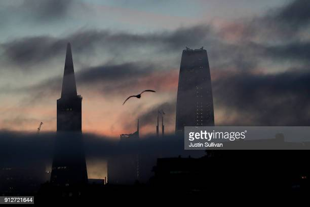 The Transamerica Pyramid and Salesforce Tower peek through light fog on January 31 2018 in San Francisco California