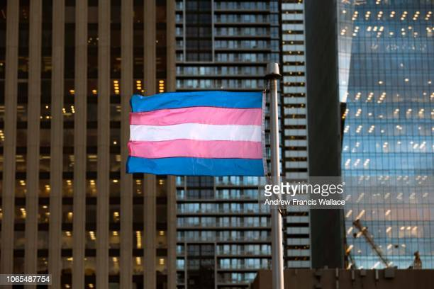 60 Top Transgender Flag Pictures, Photos, & Images - Getty
