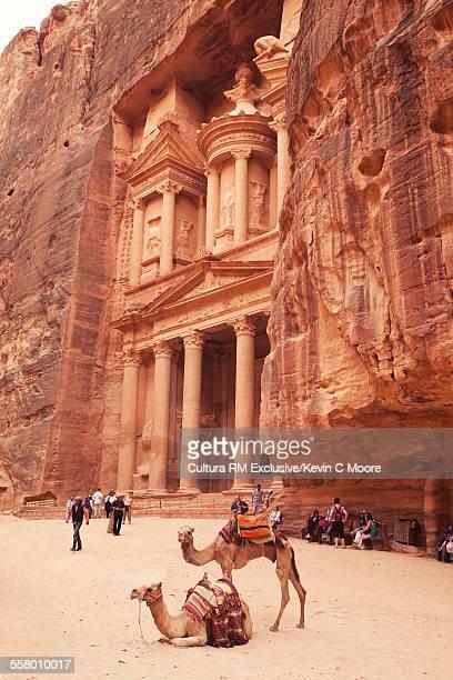 the treasury, petra, maan, jordan - letrac stock pictures, royalty-free photos & images