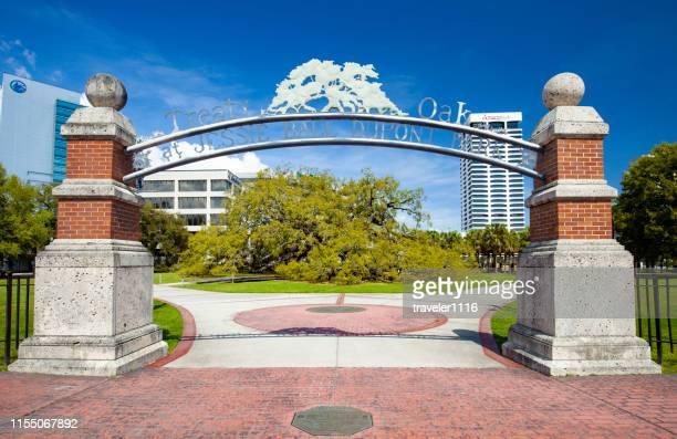 フロリダ州ジャクソンビルの条約オーク - フロリダ州ジャクソンビル ストックフォトと画像