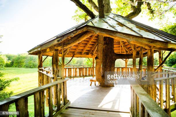 the tree house - burlington vermont stock photos and pictures