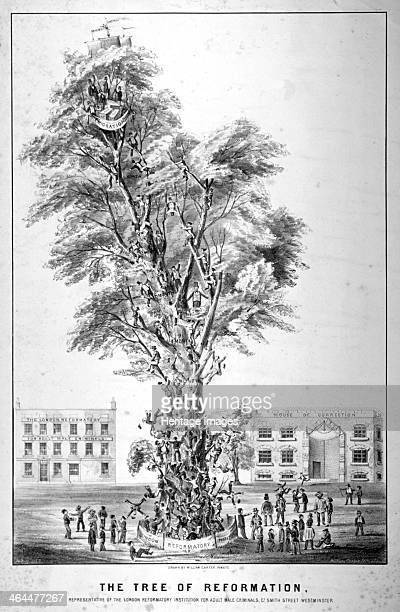 'The Tree of Reformation' 1853 Male criminals climbing a tree with a view of the building in the background This is representative of the London...