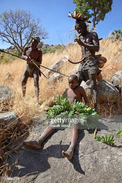'The tribe of the leaves women' also called Komas In Cameroon In February 2007Between 10 or 12 years old young boys have to pass the circumcision...