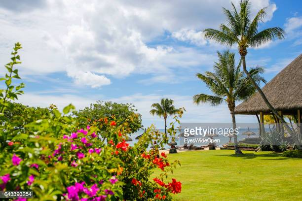 The tropical garden with palm trees and bougainvillea flowers of The Oberoi Hotel on December 07 2016 in Turtle Bay Mauritius