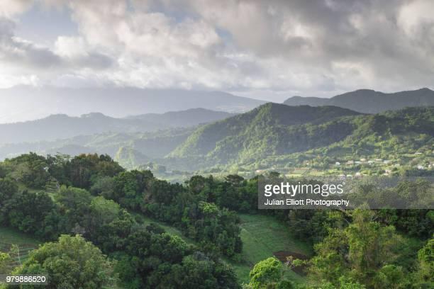the tropical island paradise of martinique. - isla martinica fotografías e imágenes de stock