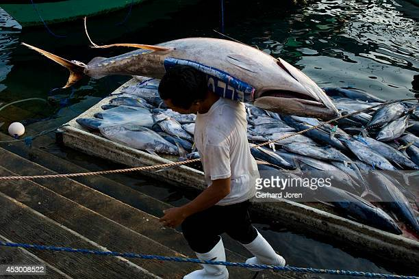 The Tuna fish market at the General Santos Fish Port Complex. The General Santos Fish Port Complex , covering an area of 11 hectares, south of...