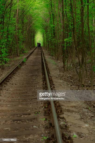 the tunnel of love in ukraine - ウクライナ トンネル ストックフォトと画像