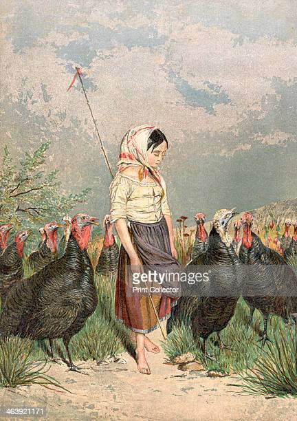 'The Turkey Guardian' 1858 Turkeys were raised in Norfolk for the Christmas market and children such as this little girl were employed to watch over...
