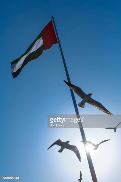 the uae flagpole in abu dhabi. - vertical stock pictures, royalty-free photos & images