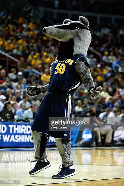 The UC Irvine Anteaters mascot walks on the court during a timeout in the second half against the Louisville Cardinals during the second round of the...