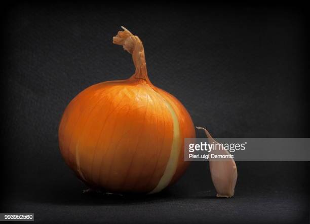 the ugly duckling - ugly pumpkins stock photos and pictures