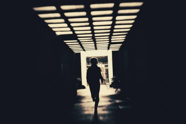 Wapblox | The Silhouette Revenge [Episode 12]