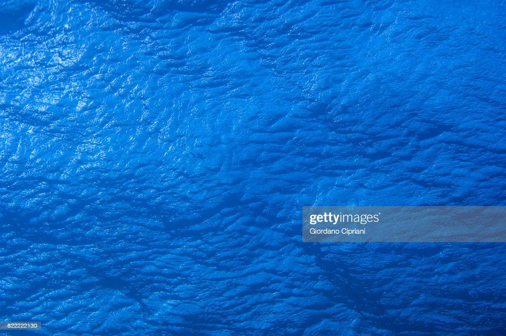 The underwater world of Java Sea, Gili Islands, Lombok, Indonesia. : Stock Photo