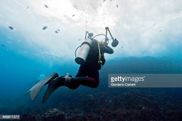 the underwater world of the cocos islands. - aqualung diving equipment stock pictures, royalty-free photos & images