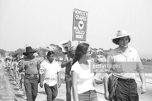 The United Farm Worker's 1000 Mile March approaches Malibu California summer 1975 Cesar Chavez is visible in the second row of marchers The march was...