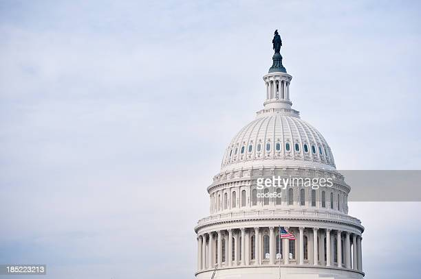 the united states capitol in washington dc - architectural dome stock pictures, royalty-free photos & images
