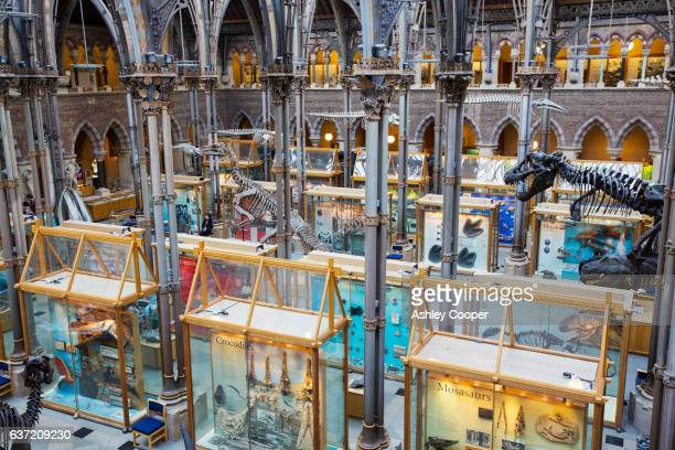 The University Museum or Oxford Natural History museum, Oxford, UK.