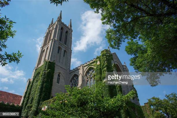 the university of chicago - university of chicago stock pictures, royalty-free photos & images
