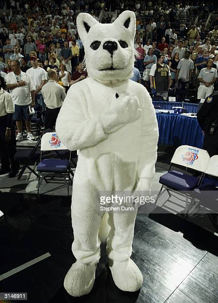 The University of Connecticut Huskies mascot stands for the National Anthem during the fourth round game of the NCAA Division I Men's Basketball...