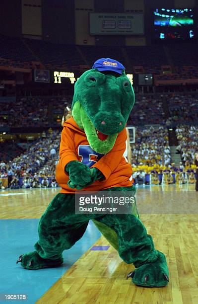 The University of Florida Gator's Mascot performs during the SEC Men's Basketball Tournament at the Louisiana Superdome on March 14, 2003 in New...