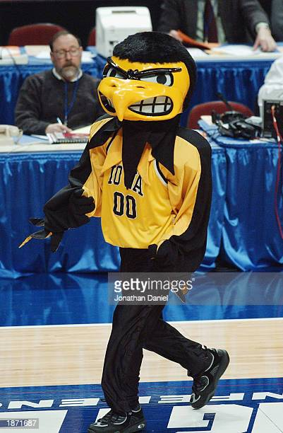 The University of Iowa Hawkeyes mascot entertains fans during the Big Ten Men's Basketball Tournament against the Ohio State University Buckeyes at...