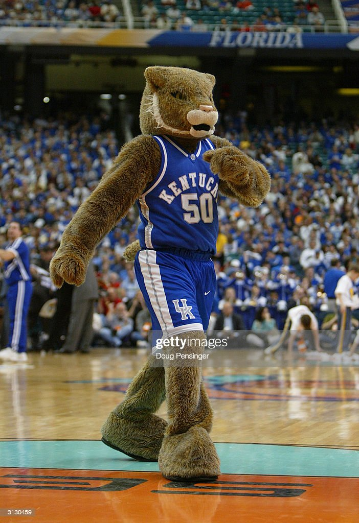 the university of kentucky wildcats mascot entertains the fan during