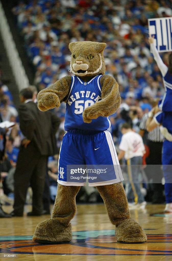 The University of Kentucky Wildcats mascot entertains the fan during an intermission in the in the SEC Men's Basketball Tournament against the University of Georgia Bulldogs at the Georgia Dome on March 12, 2004 in Atlanta, Georgia. Kentucky defeated Georgia 69-60.