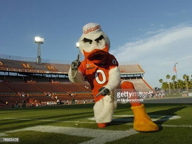 The University of Miami mascot, the Ibis, sets for play against Texas A & M at the Orange Bowl on September 20, 2007 in Miami, Florida. Miami won 31...