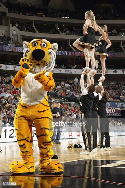 The University of MissouriColumbia Tigers mascot Truman the Tiger performs near the Mizzou cheerleaders druing an intermission in the Phillips 66 Big...
