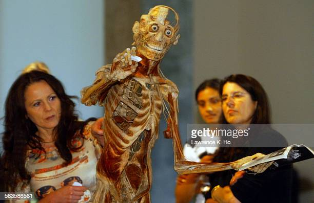 The upcoming controversial exhibit at the California Science Center of human bodies preserved by the process called plastination Pic shows Dr...