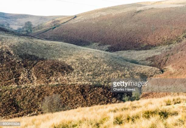 The Upper Doethie Valley, Ceredigion.The Cambrian Way, Wales, UK