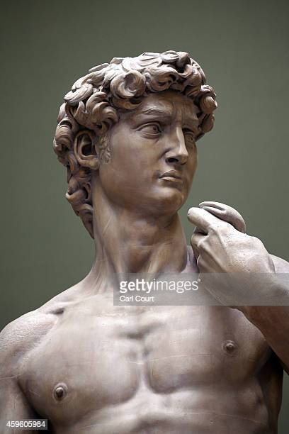 The upper half of a five metre high cast of Michelangelo's David is pictured during a press preview for the newly renovated Weston Cast Court at the...