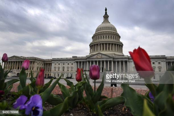 The US Capitol is seen as Facebook CEO Mark Zuckerberg prepares to appear for a hearing with the House Energy and Commerce Committee at the Rayburn...